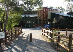 Lake St Clair Visitors Centre